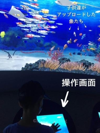 参加型巨大デジタル水槽操作画面