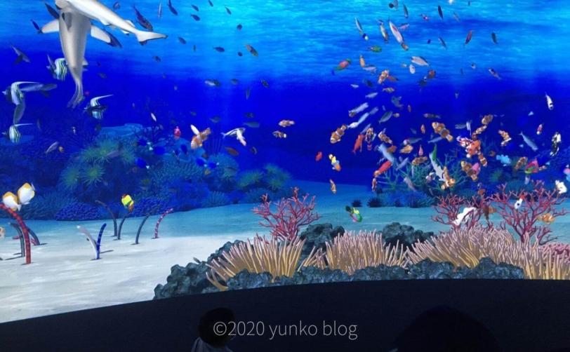 鴨川シーワールドトロピカルアイランド参加型巨大デジタル水槽
